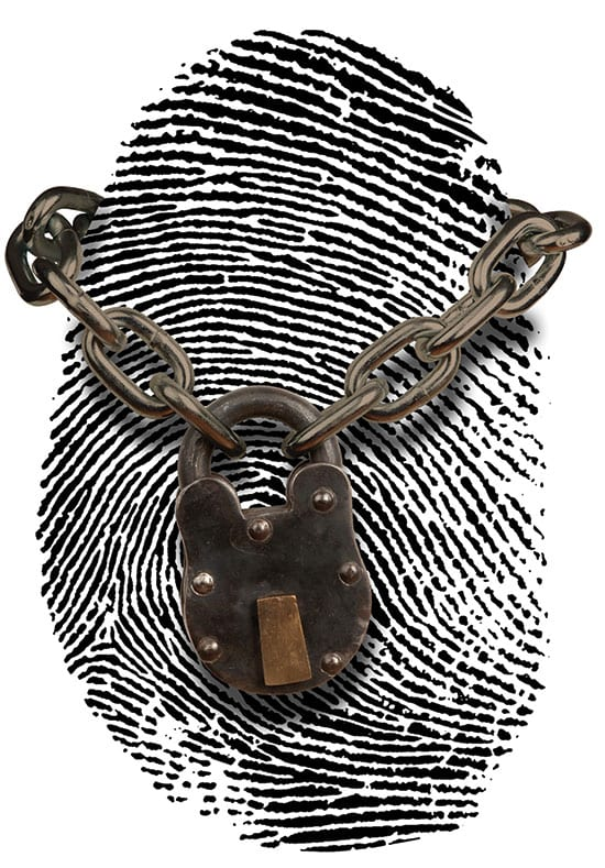 Fake Identity Fraud: Protection through Awareness